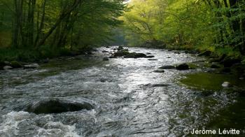 morvan-la-cure-riviere-sauvage-jerome-levitte.jpg